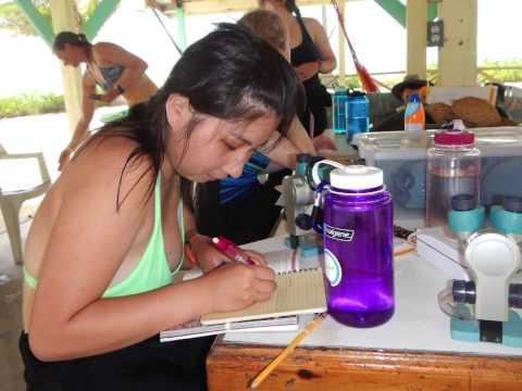 Rice University Tropical Field Biology Course EBIO319 Summer 2015