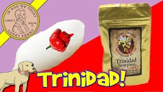 How To Make Cotton Candy With Trinidad Scorpion Pepper Candy