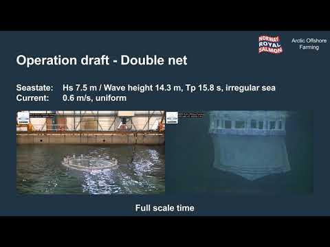 Norway Royal Salmon - Arctic Offshore Farming model test