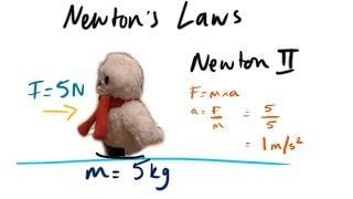 Newton's Laws - GCSE Physics Revision