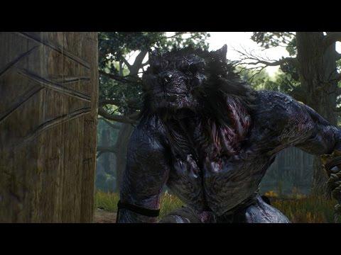 The Witcher 3: Wild Hunt - Безымянный