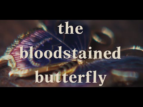 The Bloodstained Butterfly Original Trailer (Duccio Tessari, 1971)