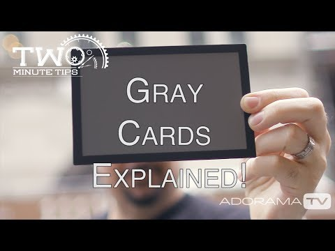 Using A Gray Card: Two Minute Tips With David Bergman