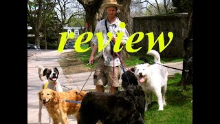 Reform Your Dog Review 2019 - Don't Buy Until You Watch This
