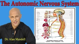 The Autonomic Nervous System   (How Pinched Nerve Affects Organs in the Body) - Dr Mandell