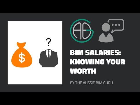 BIM Salaries -