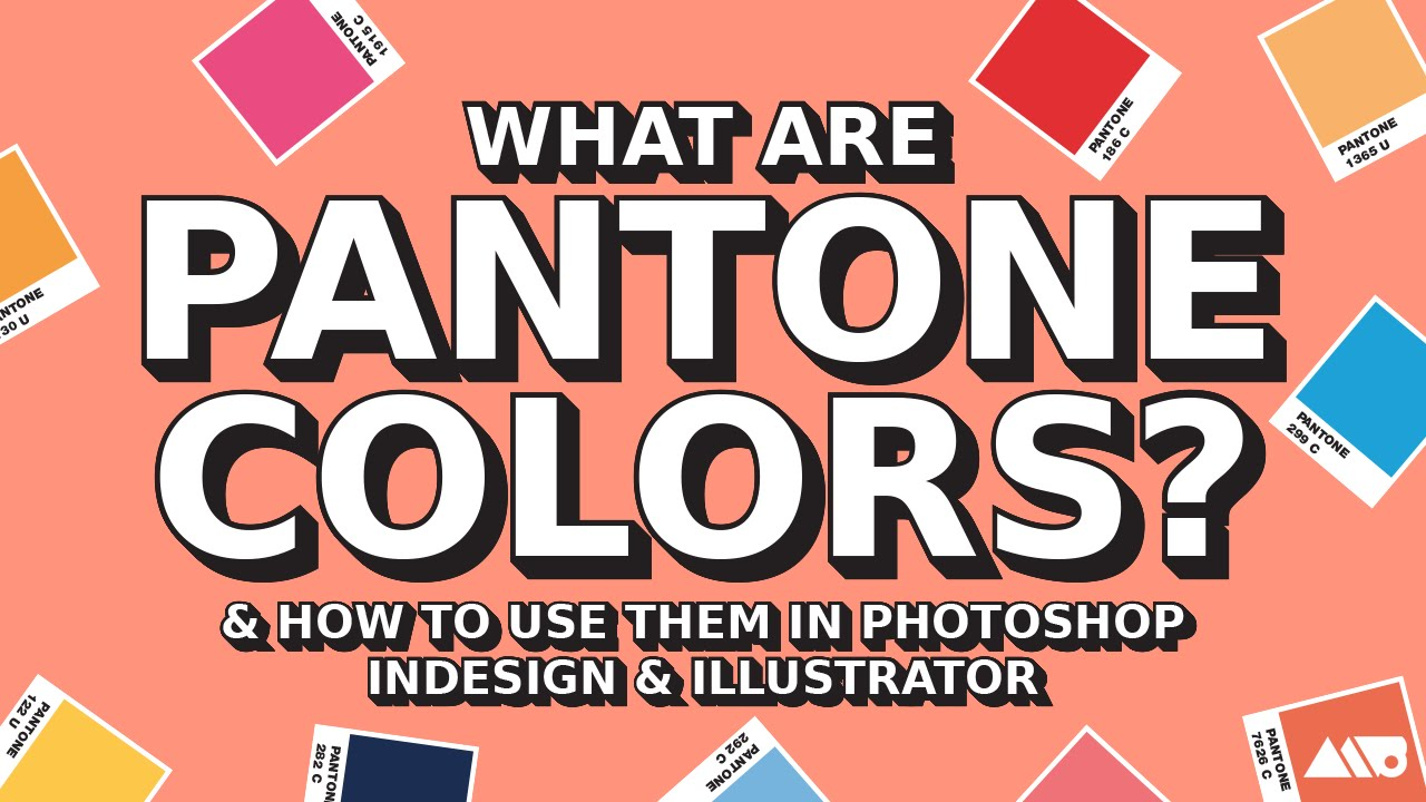 What are pantone colors how to use them in adobe for Where to buy pantone paint