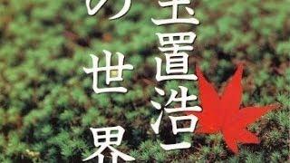 恋の予感「玉置浩二」カバー:水野渉