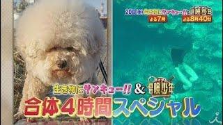 「神的瞬間 撮れちゃったスペシャル」&「脱出島」バトルロワイヤル!! 9...