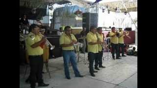 ♪ El Tololoche ♪ - Banda La Tromba Musical