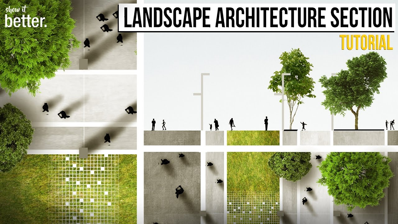 Landscape Architecture Section and Plan in Photoshop Tutorial - YouTube