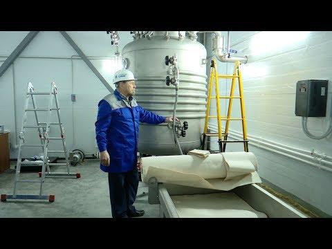 В Тамбовской области запустили первый в стране комбинат по производству высокопитательных кормов