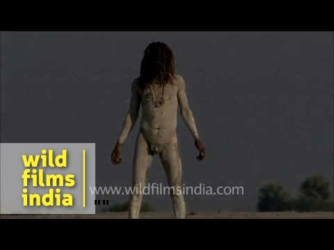 Buck naked Naga sadhu doing Yoga on banks of Ganges river!