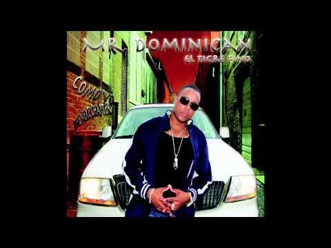 Mr. Dominican El Tigre Fino - Ella Quiere Fuego
