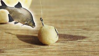 Как сделать тесто для рыбалки для карася