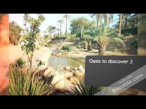 Gabes touristic  guide  - Gabes - MDev Tunisia