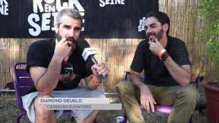 Rock en Seine 2016 : Entre artistes confirmés et en devenir