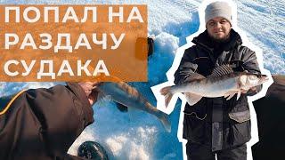 Зимняя рыбалка на судака Попал на раздачу