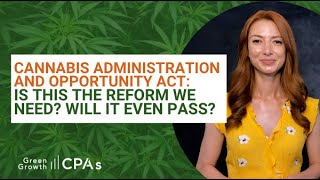Cannabis Administration and Opportunity Act: What You Need to Know
