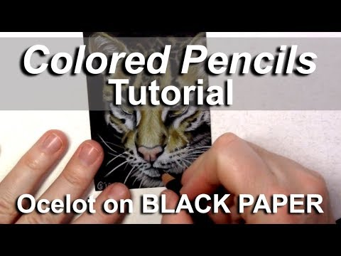 (Real time) Colored Pencils TUTORIAL: how to draw an OCELOT with Prismacolor on black paper