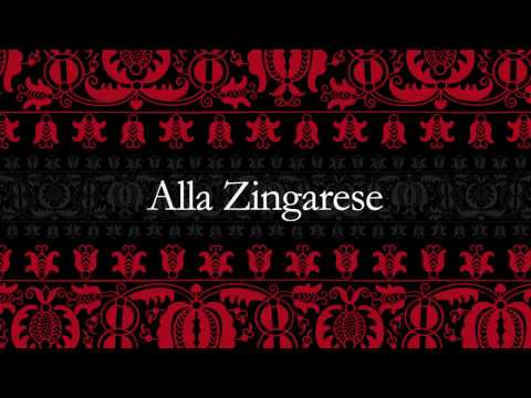 Alla Zingarese Concert on 2017 May 21st