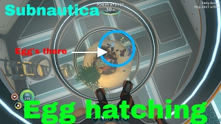 Download Egg Hatching First Ghost Leviathan In Game