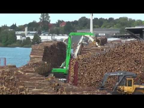 Ganzzug wird im Lübecker Hafen mit Holz beladen
