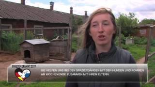 Ярославский приют «Ковчег» ждет немецких гостей