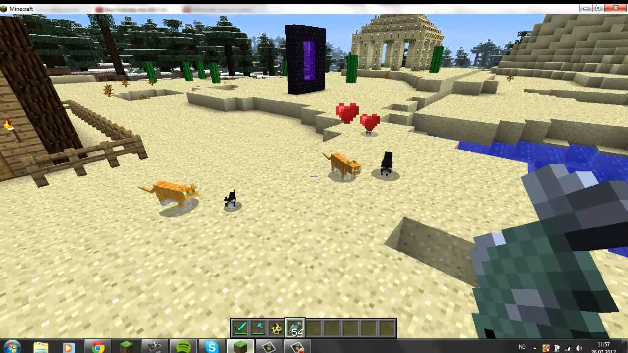 Where To Get A Minecraft Cat Creative
