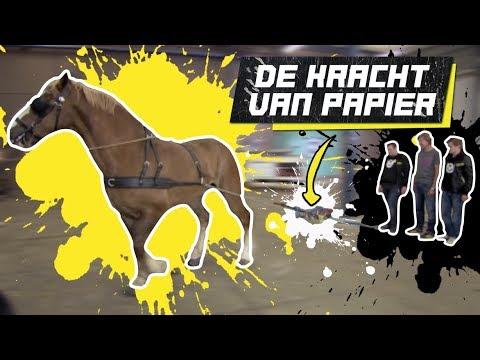 #64 MET PAARDENKRACHT PAPIER UIT ELKAAR TREKKEN! - CHECKPOINT CLASSIC