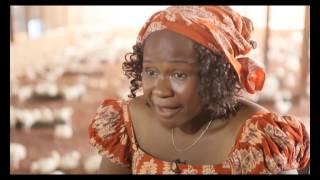 YouWin: Adora - Enugu (Poultry Farmer). YouWin Grant – N8.5m