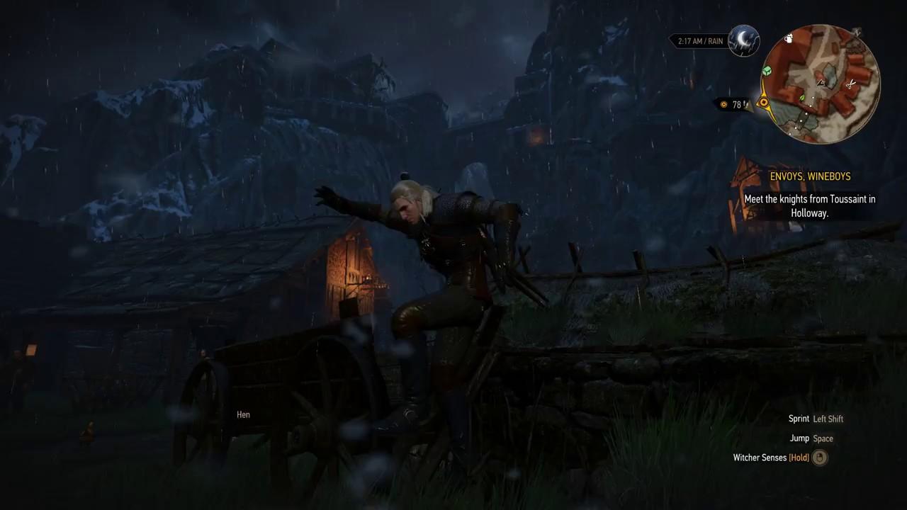 The Witcher 3 Glitch on Ard Skellig