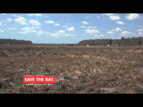 Join Save The Bay Today