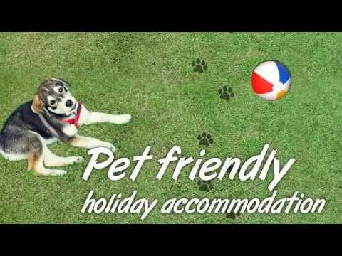 Pet Friendly Holiday Accommodation