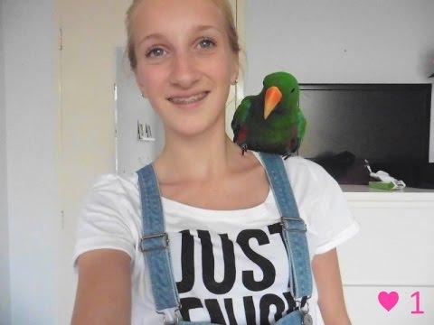 vlog #1   ♥ naakt cavia's en papegaai ♥