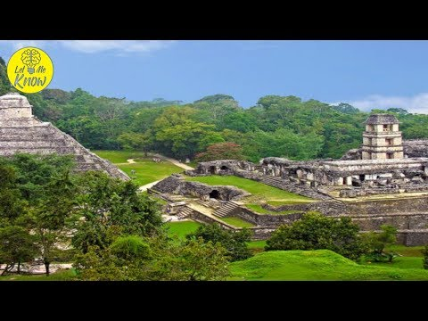 The Amazing Water Management of the Ancient Mayans