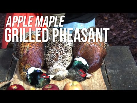 Grilled Pheasant Recipe By The BBQ Pit Boys