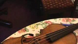 Anuragini itha ..violin solo