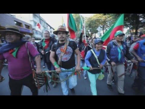 Indígenas lideran participación