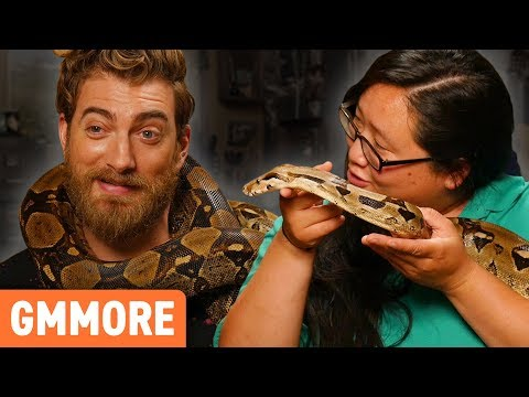 Hanging Out with TWO 6ft Boa Constrictors