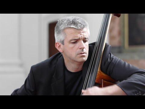 SCHUBERT Arpeggione Sonata (1st mov.) Božo Paradžik & Mira Wollmann