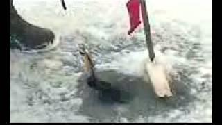 Смотреть Рыбалка: Щука На Ладожском Озере - Ловля Рыбы На Ладожском Озере
