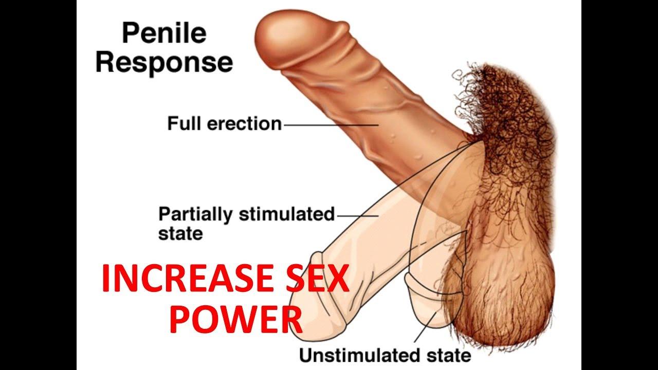 My penis hasn't grown