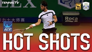 Hot Shot: Basilashvili Fends Off Del Potro Tweener, Lob Shanghai 2017