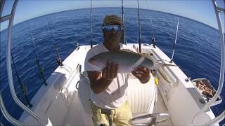 KEY WEST FISHING BIG YELLOWTAIL SNAPPER NOVEMBER 2017