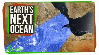 The World's Next Ocean