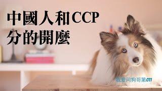 中国人和中国共产党分的开吗?只能批评中共不能批评中国人?【我爱问狗哥第011】