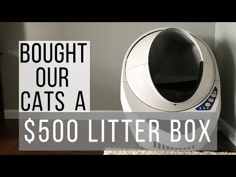 BOUGHT OUR CATS A $500 LITTER BOX / LITTER ROBOT III/ OPEN AIR 3 LITTER ROBOT/ CAT REACTS