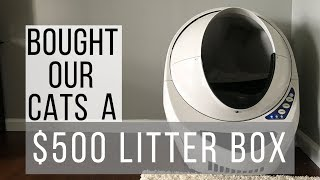 BOUGHT OUR CATS A $500 LITTER BOX / LITTER ROBOT III/ OPEN AIR 3 LITTER ROBOT/ CAT REACTS