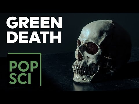 How to Die in an Eco-Friendly Way | Green Death 101